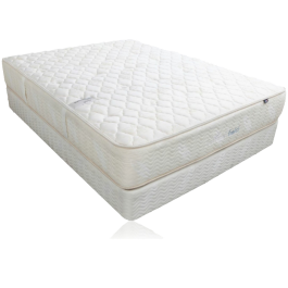 Summerfield Traditional Two Side Series Elizabeth Cushion Firm Mattress